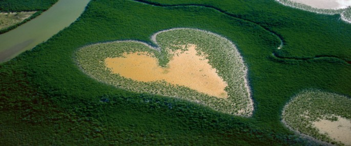 The-Earth-from-above-by-Yann-Arthus-Bertrand